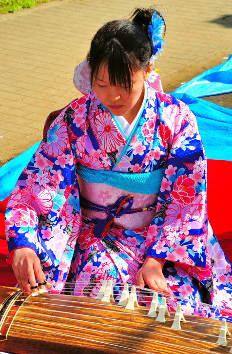 Young Koto Player
