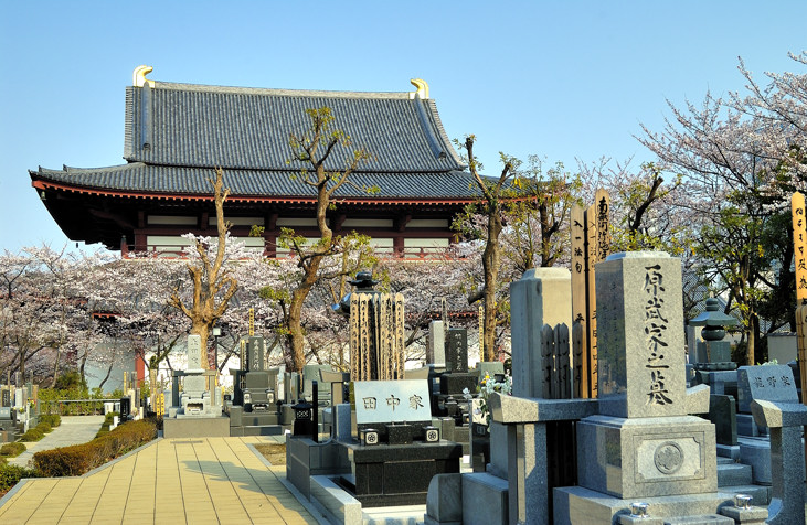 Graveyard and Zojoji Temple