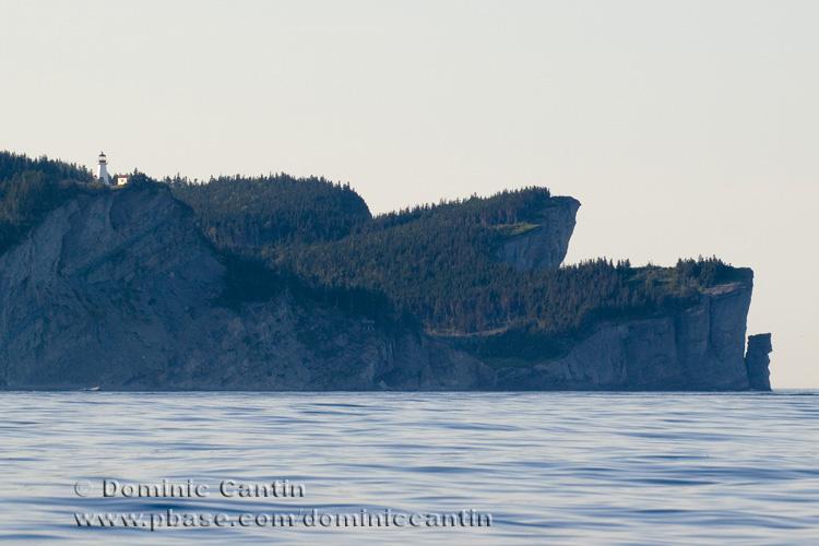 Cap-Gaspé