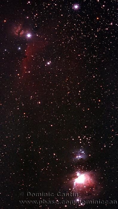M42 & IC 434