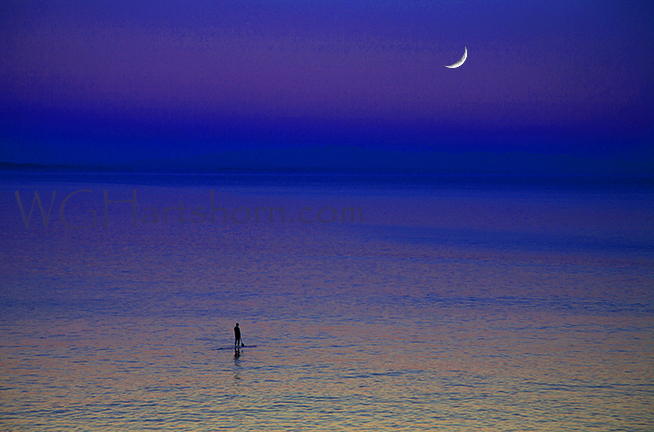 Moonlight Mist