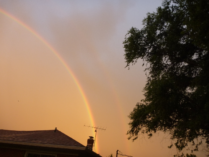rainbow2010-1.JPG
