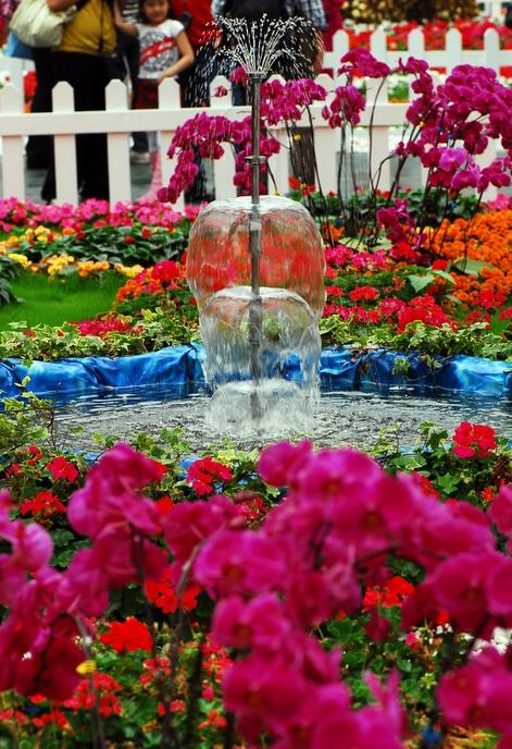 flower-162.jpg