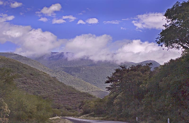 The Road to Tancoyol - 7