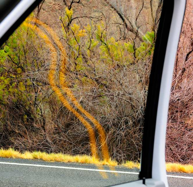 Road Reflection