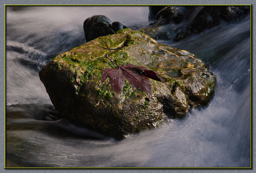 Like a leaf over troubled water...