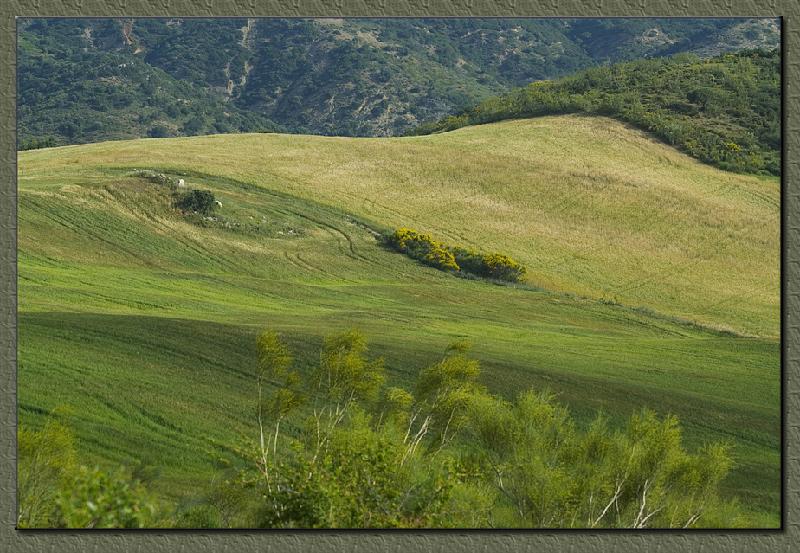 Andalucian landscapes