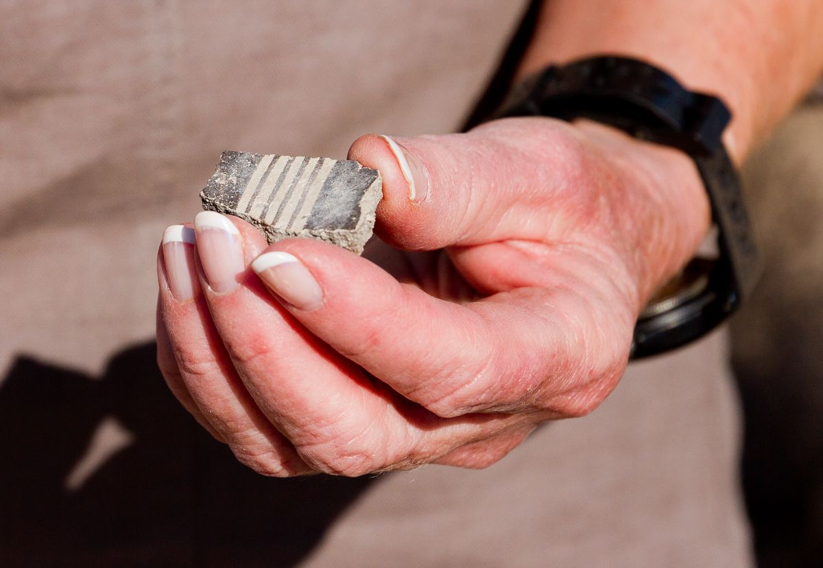 Mimbres Pottery Sherd