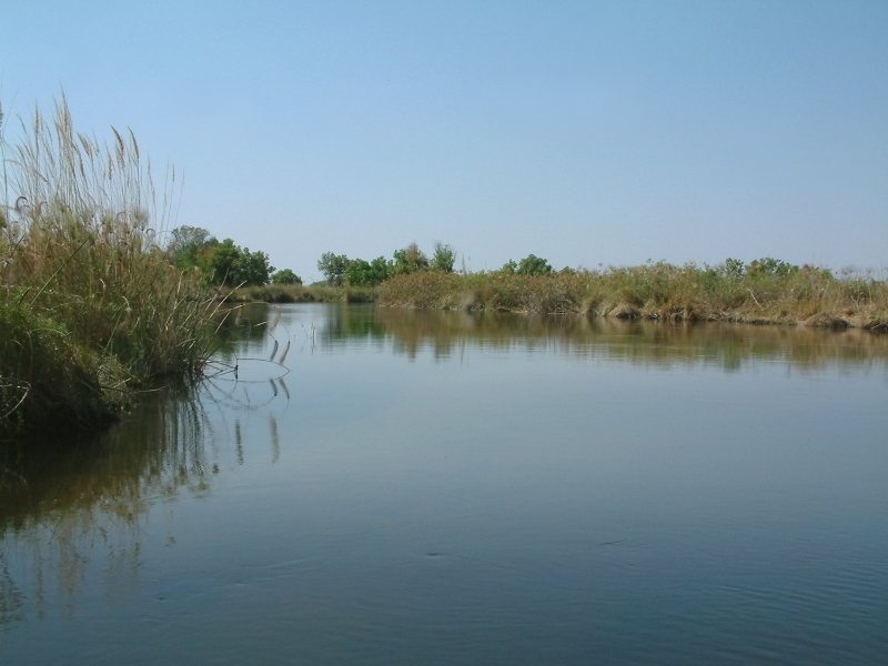Picturesque waters of the Delta
