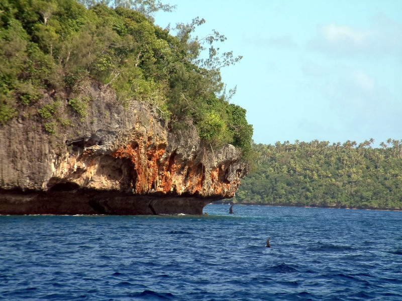 The islands of Vavau are limestone and covered with vegetation