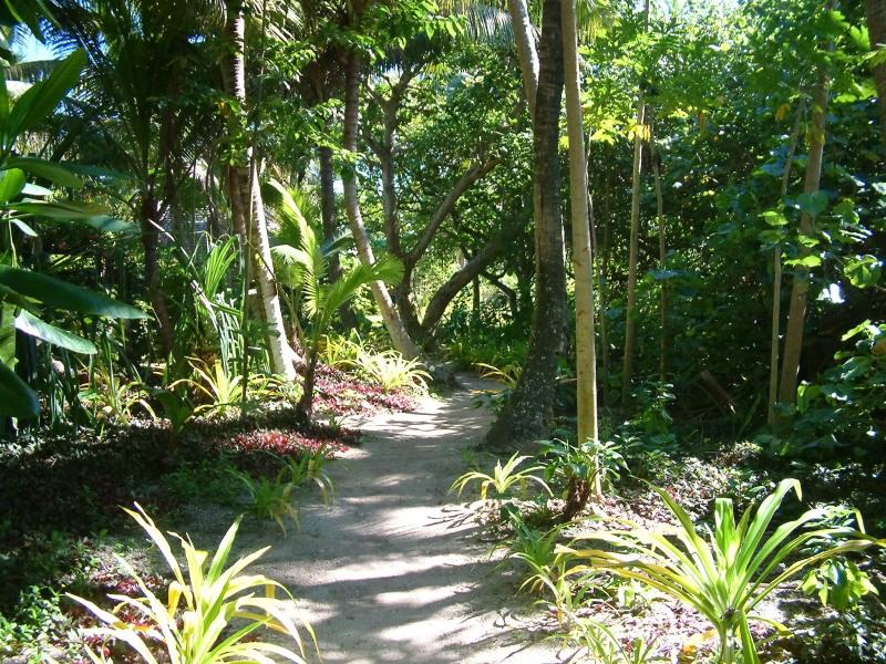 Fafa Islands Bush Trail