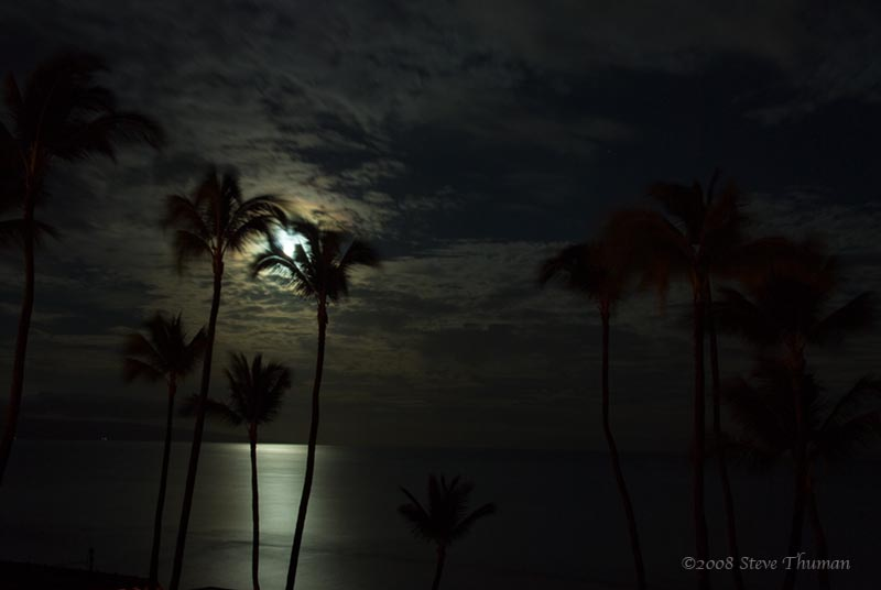 Early Morning Moonlight