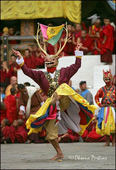 Deer Dance, Tshechu Festival