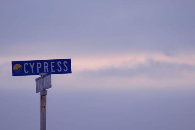 Cypress at Wadsworth