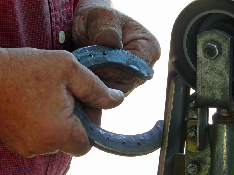 Horseshoer Hand & Steel Shoe