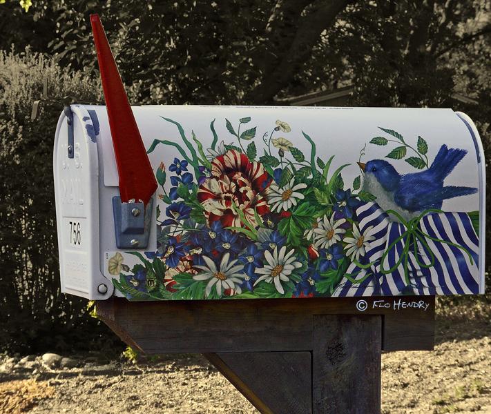 Painted_Bluebird & Garden