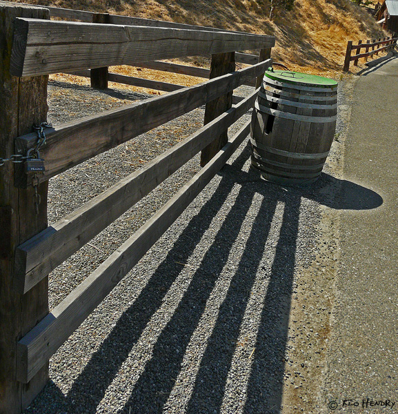 Fence Line to the Tipsy Barrel