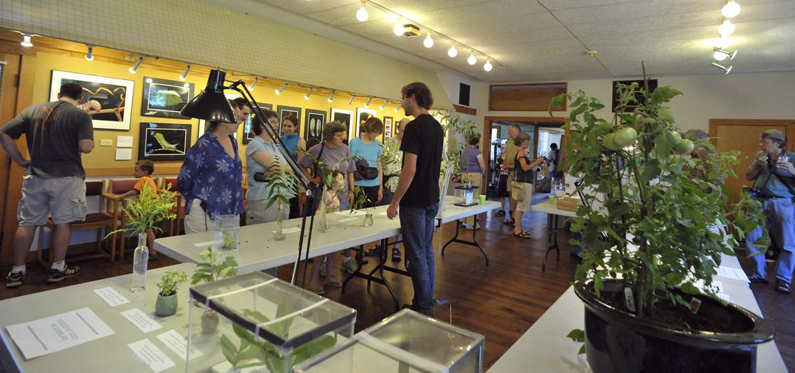 Broadmoor Caterpillar Show: Sam Surrounded