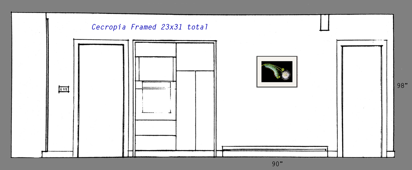 Single 17x25 print framed to 23x31