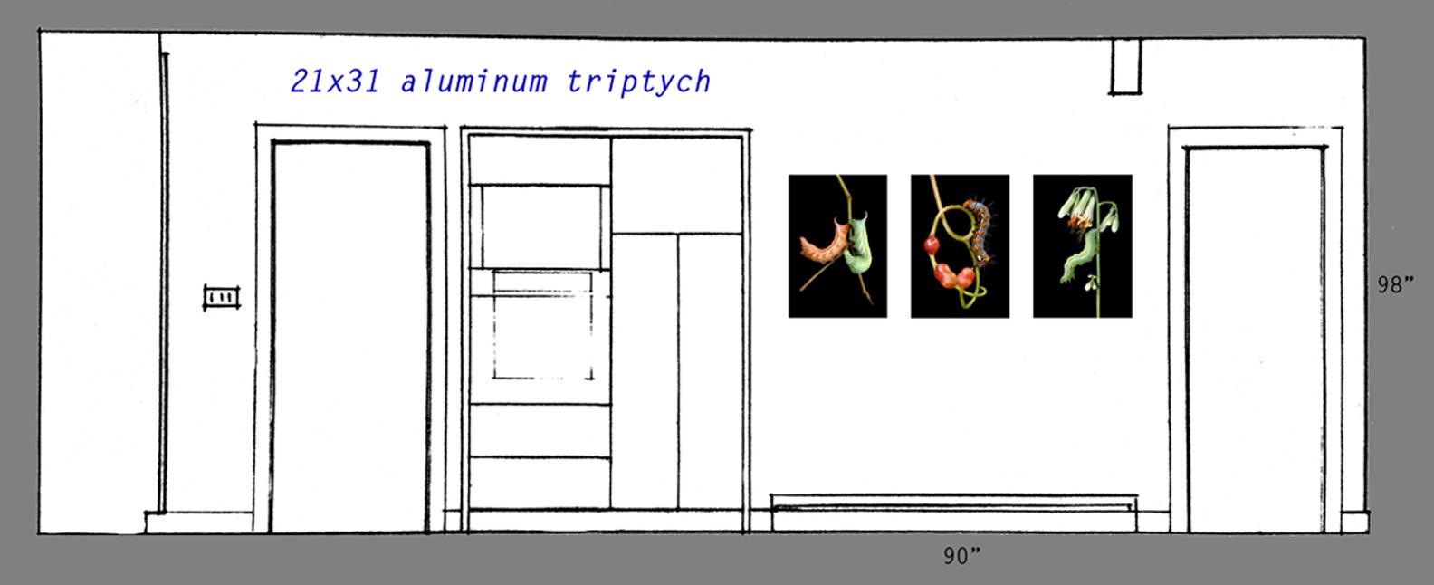 Triptych 31x21