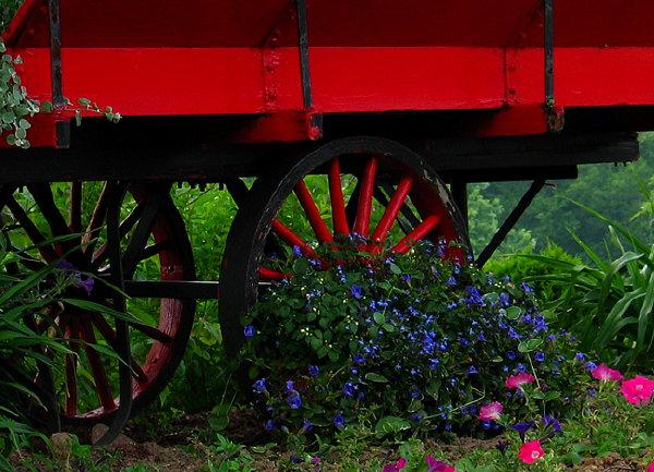 Red Flower Cart*