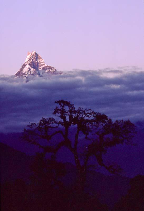 Around Annapurna-44.jpg