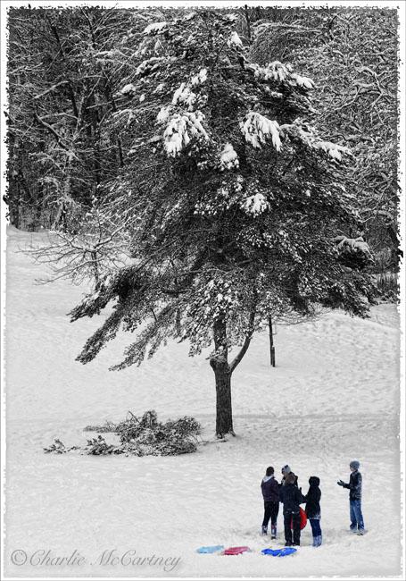 Winter Fun - DSC_5763.jpg