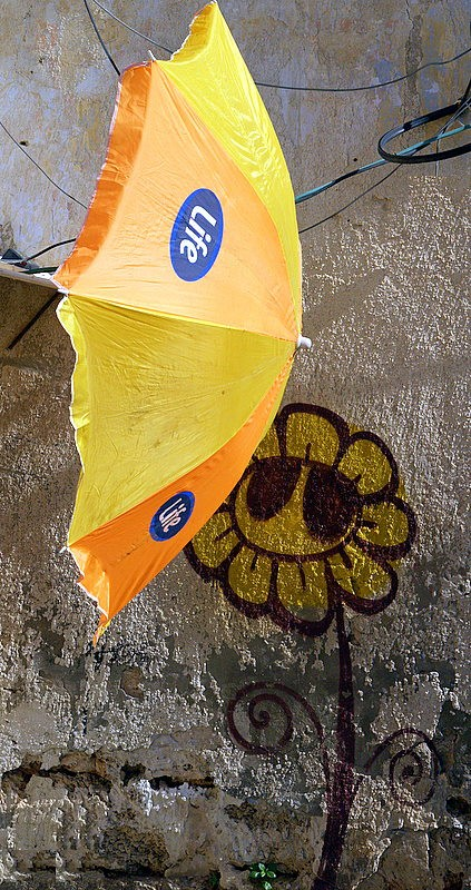 umbrella and flower.JPG