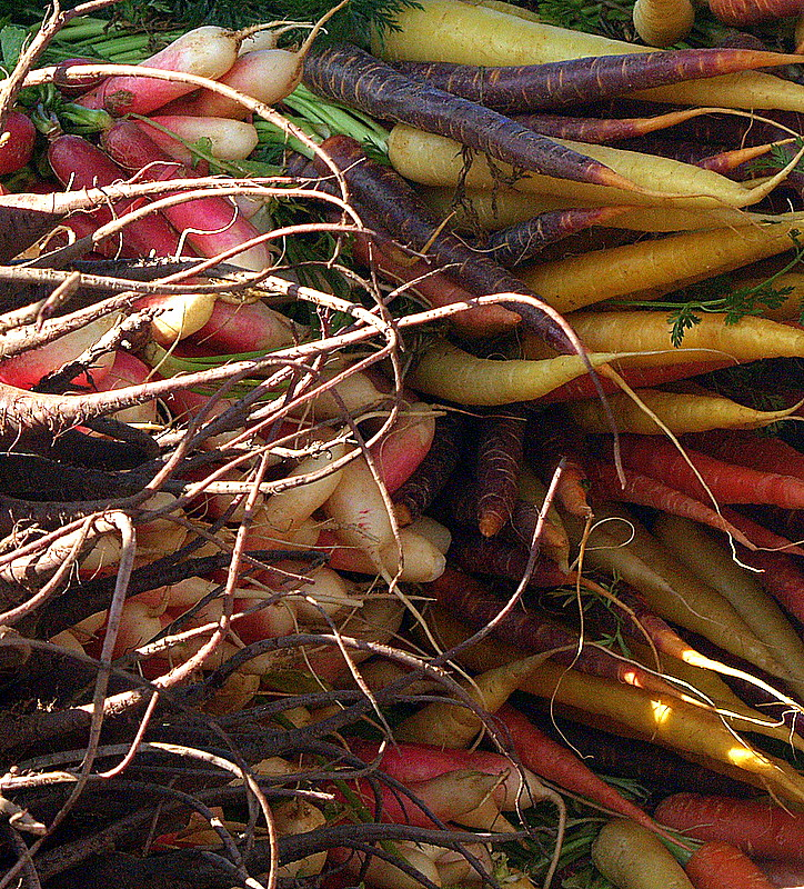 colored carrots.JPG