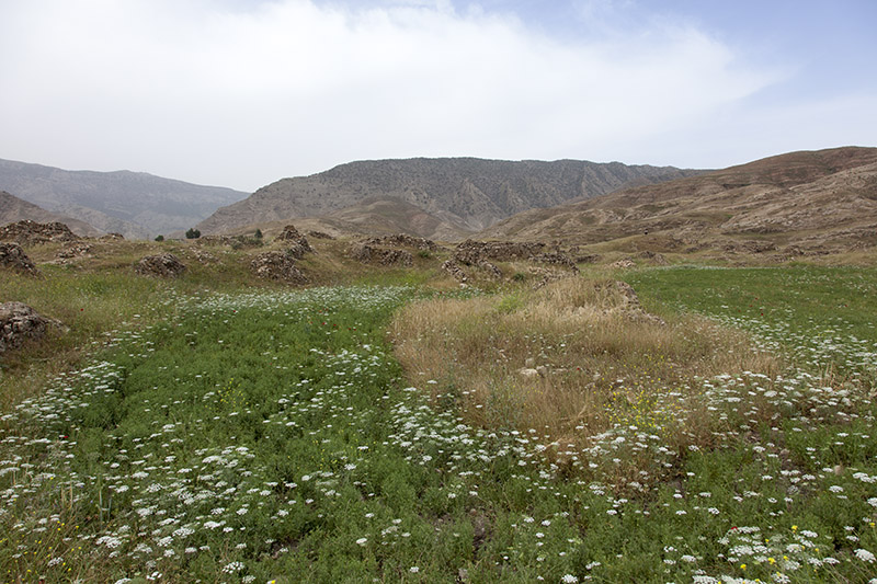 Seymareh ( Madakto )