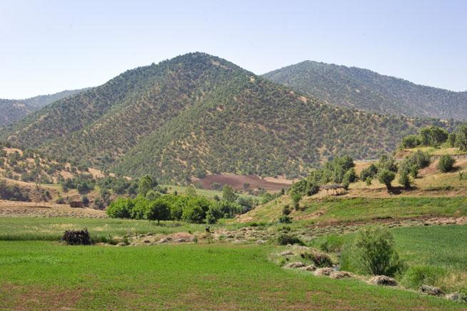 Kurdistan Province