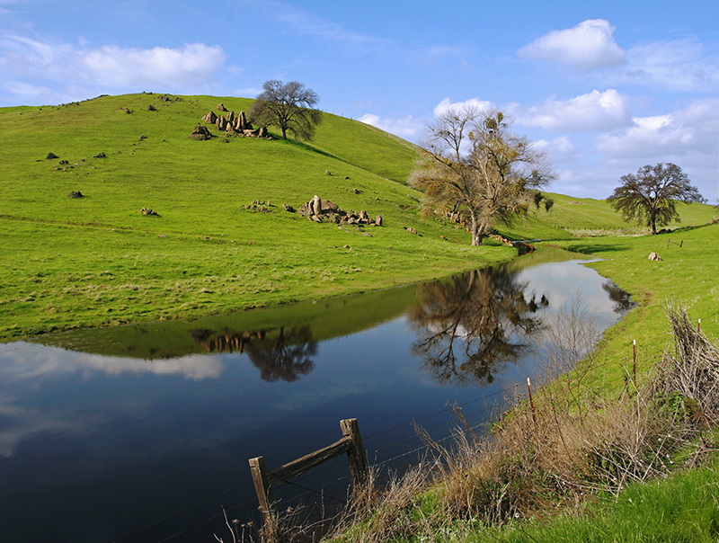 Cow-Pond-PWS.jpg