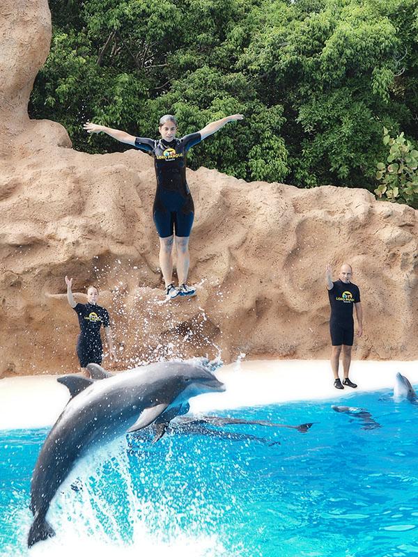 Y el típico show de los delfines / And the typical dolphins show