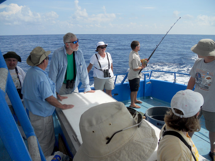 Fishing along a rip line of Sargassum