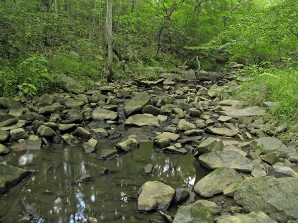 Dial Creek