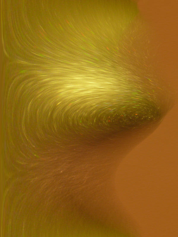 Lady Godiva in Abstract of course @¿@