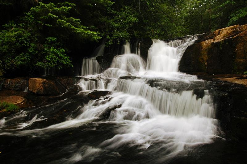 Alsea Falls, Summer Study #3