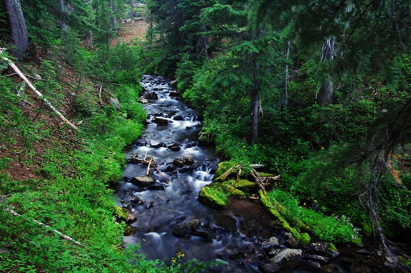 Canyon Creek, Study 3