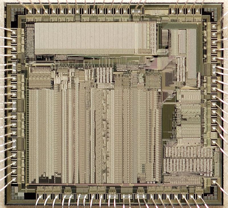 chip37_012.jpg