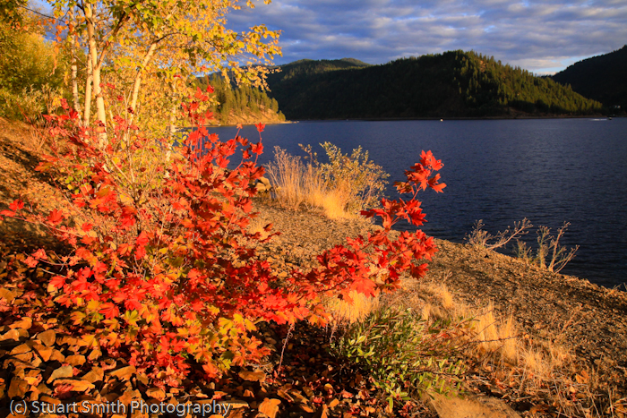Lake Coeur d Alene October 2011-4463