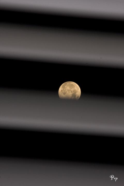 February 9, 2009  - Full Moon