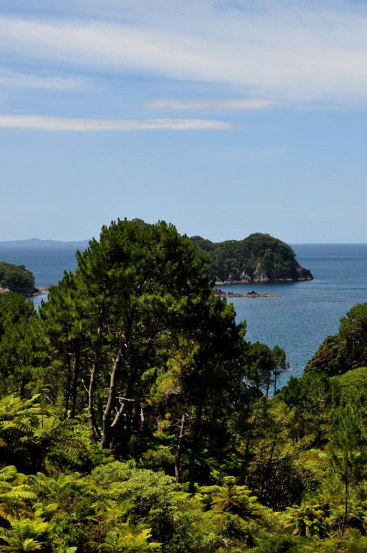 Te Whanganui-A-Hei Marine Preserve