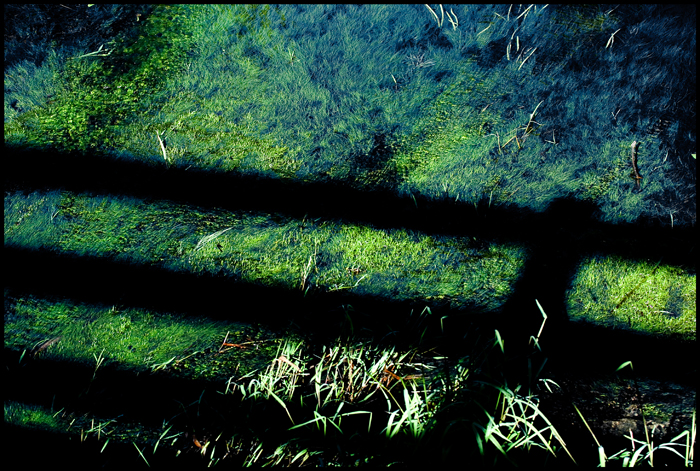 Like a bad moment in the life, the shadow of the fence in the little lake will disappear with the night ...
