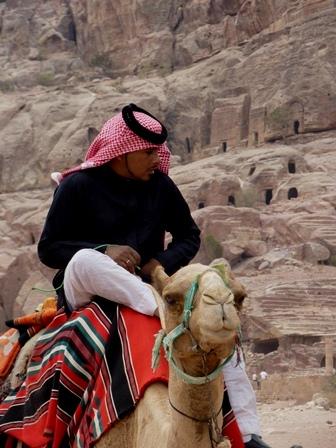 Camel driver 3