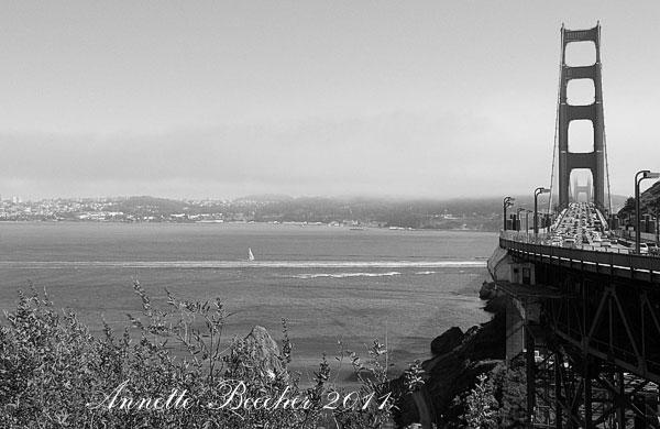 California2011-148wb.jpg