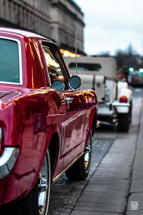 Pink-Mustang