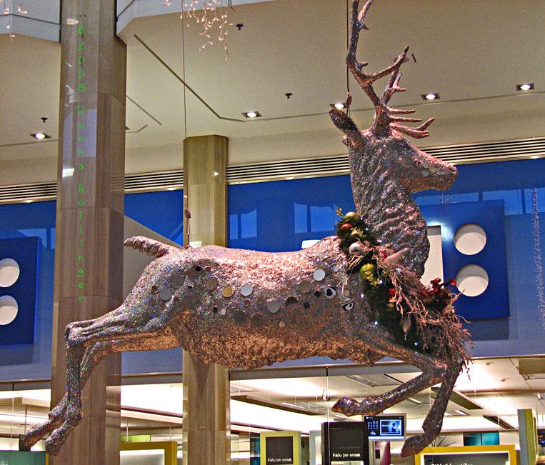 I love Reindeer