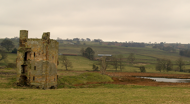 Ravensworth  Castle  and  mere.