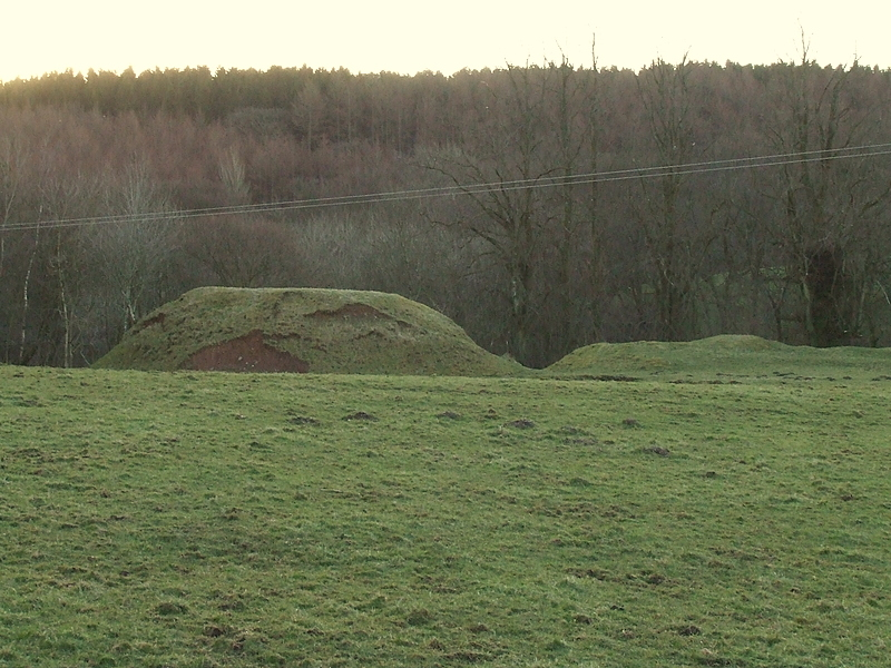 Wamphrey Place,motte and bailey castle.