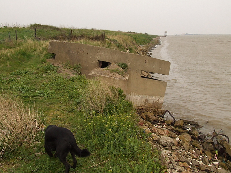 A World War 2 pillbox succumbing to the ingress of the sea.